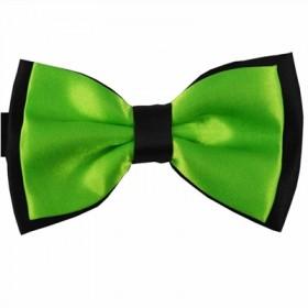 Tofarvet grøn butterfly