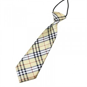 Ternet gyldent slips til børn